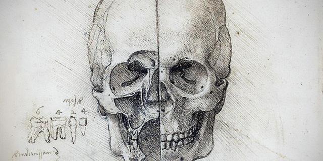 Leonardo-da-Vinci-calavera