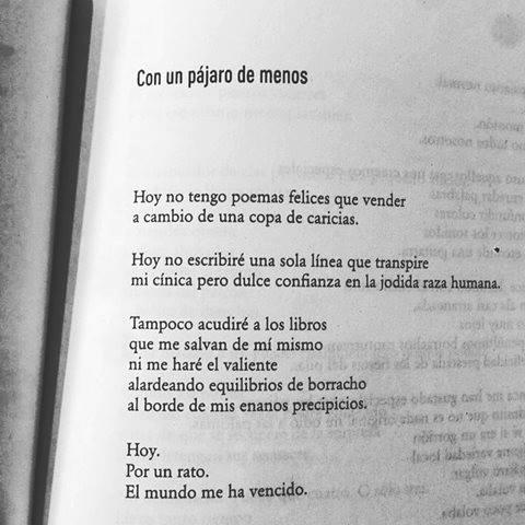 Texto de Carlos Salem.jpg
